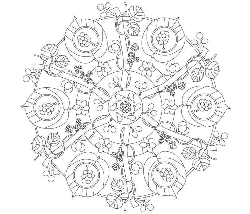 mandala_koerner illustration sylvia wolf