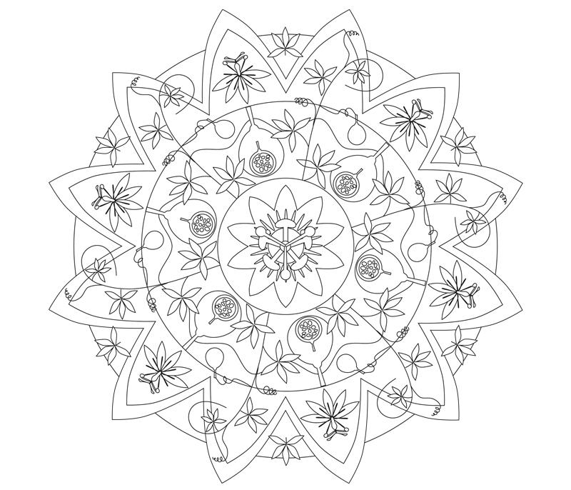 mandala passionsblume illustration sylvia wolf