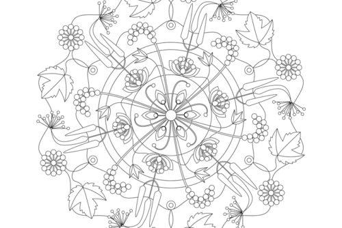 mandala traubensilberkerze illustration sylvia wolf